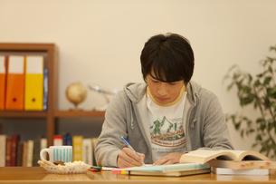 勉強する男の子の写真素材 [FYI01310222]