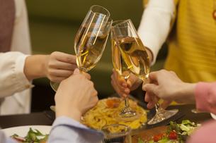 乾杯する女性4人の写真素材 [FYI01311355]
