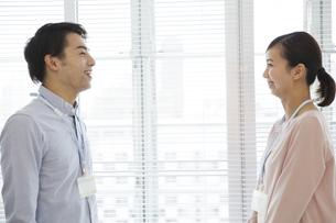 向き合うビジネス男女の写真素材 [FYI01312009]
