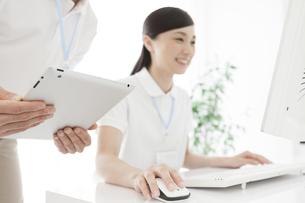 パソコンを操作する女性とタブレットPCを持つ男性の写真素材 [FYI01314476]