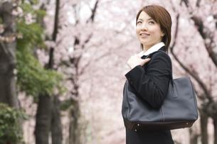 桜の下で少し上を見上げるビジネスウーマンの写真素材 [FYI01315042]