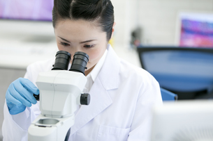 顕微鏡を覗く研究員の写真素材 [FYI01315044]