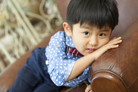 ソファーに寝転ぶ男の子の写真素材 [FYI01317064]