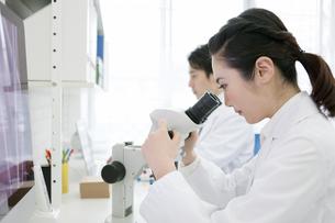 顕微鏡を覗く研究員の写真素材 [FYI01318853]