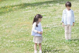 芝生に立っている兄妹の写真素材 [FYI01319376]