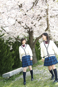 話をしている女子校生2人の写真素材 [FYI01321023]