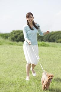 犬と散歩する女性の写真素材 [FYI01321097]