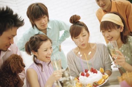 誕生日を祝う男女6人の写真素材 [FYI01321427]
