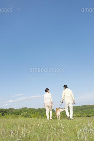 犬と中高年夫婦の後姿の写真素材 [FYI01322043]