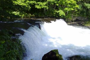 さくらの滝の写真素材 [FYI01322087]