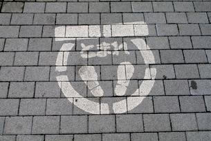 道路表示 とまれの写真素材 [FYI01322729]
