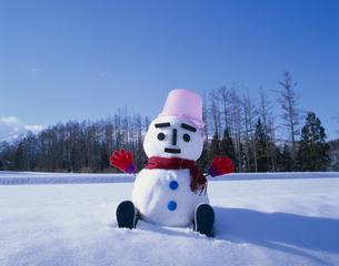 雪ダルマの写真素材 [FYI01322988]