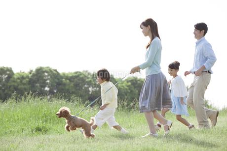 散歩をする家族と犬の写真素材 [FYI01323223]