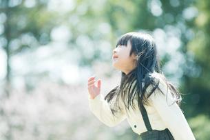 見上げる女の子の写真素材 [FYI01323523]