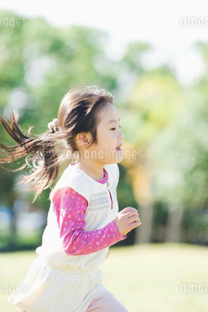 公園で走る女の子の写真素材 [FYI01323580]