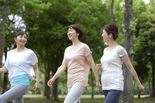 ウォーキングをする中高年女性3人の写真素材 [FYI01323872]