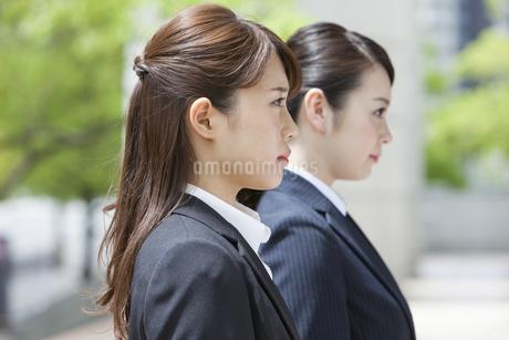 2人のビジネスウーマンの写真素材 [FYI01323923]