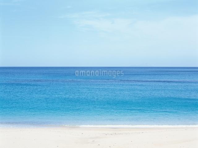 一湊海岸 鹿児島県の写真素材 [FYI01324288]