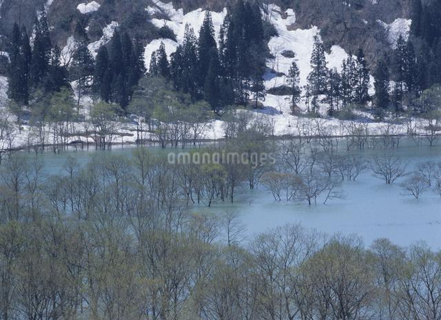 白川ダムの写真素材 [FYI01324321]