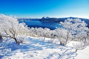 摩周湖の樹氷の写真素材 [FYI01324731]