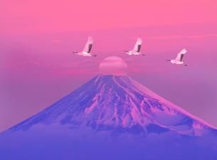 朝日と富士山とタンチョウヅルの写真素材 [FYI01324751]