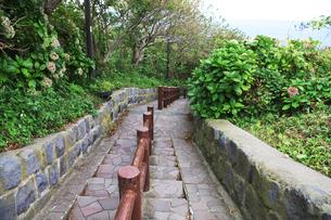 階段国道の写真素材 [FYI01325252]