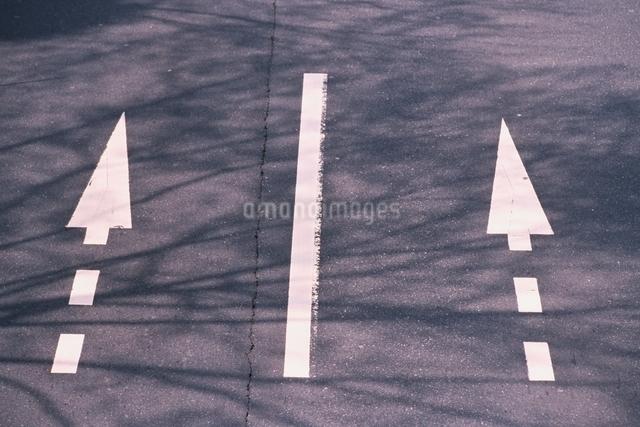 道のイメージの写真素材 [FYI01325718]