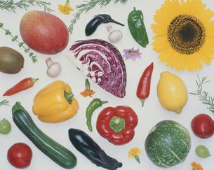 フルーツ・野菜の写真素材 [FYI01326461]