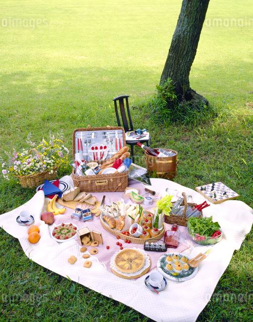 木陰でのピクニックの写真素材 [FYI01327008]