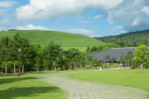 新緑の若草山の写真素材 [FYI01327354]