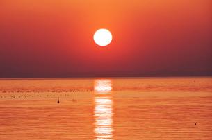 瀬戸内海(播磨灘)の夕陽の写真素材 [FYI01327484]