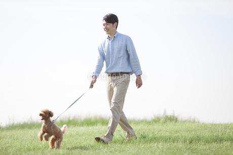 犬と散歩する男性の写真素材 [FYI01328066]
