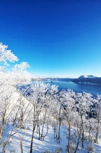 摩周湖の樹氷の写真素材 [FYI01328139]