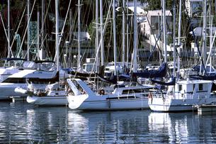 ヨットの写真素材 [FYI01328264]