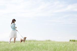 犬と散歩する女性の写真素材 [FYI01328277]