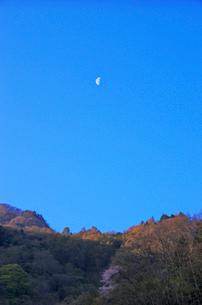 山と月の写真素材 [FYI01328715]