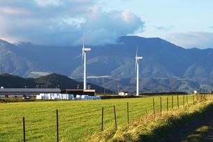 風力発電と牧草地の写真素材 [FYI01328735]