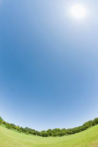 太陽と青空と芝生の公園の写真素材 [FYI01328825]