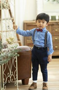 蝶ネクタイをした男の子の写真素材 [FYI01329813]