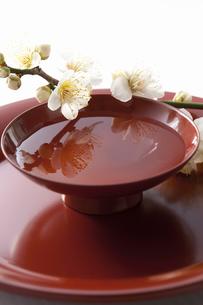 梅の花と杯の写真素材 [FYI01331342]