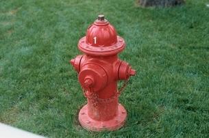 芝生の上にある赤い消火栓の写真素材 [FYI01331415]