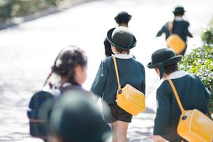 歩道を歩く幼稚園児の後姿の写真素材 [FYI01331536]
