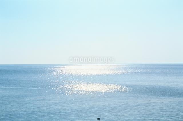 冬の海 北海道標津町の写真素材 [FYI01332733]