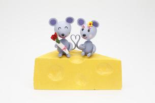 チーズに座る2匹のねずみの写真素材 [FYI01335812]
