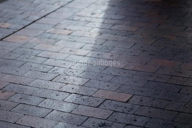 レンガ地面 光の写真素材 [FYI01336145]