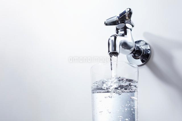コップに蛇口から出る水を入れるの写真素材 [FYI01336629]