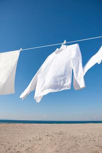 青空と白いシャツの洗濯物の写真素材 [FYI01336808]