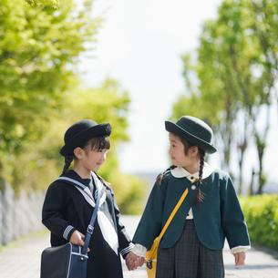 新緑の歩道で見つめ合う2人の幼稚園児の写真素材 [FYI01337122]