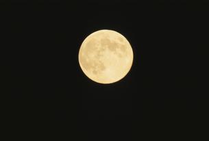 月の写真素材 [FYI01337525]