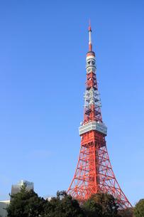 東京タワーの写真素材 [FYI01337540]